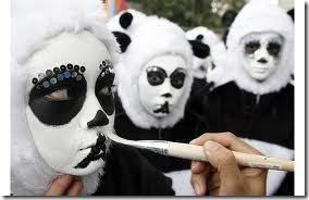 maquillaje de oso panda (10)