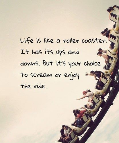 life_is_like_a_rollercoaster_quote_quote