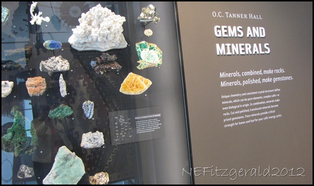 IMG_1409Gems AndMinerals