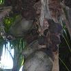seychelles9_20070412_1646815903.jpg
