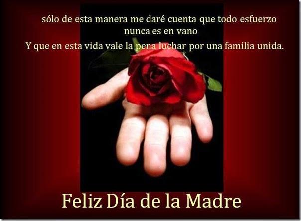 dia de las madres (20)