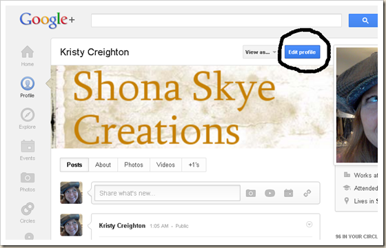 Shona Skye Creations - Enable Replies with Google  Profile 002