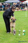 20100513-Bullmastiff-Clubmatch_31066.jpg
