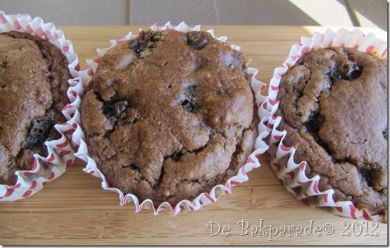 Suikervrije Boekweit Rozijn Muffins