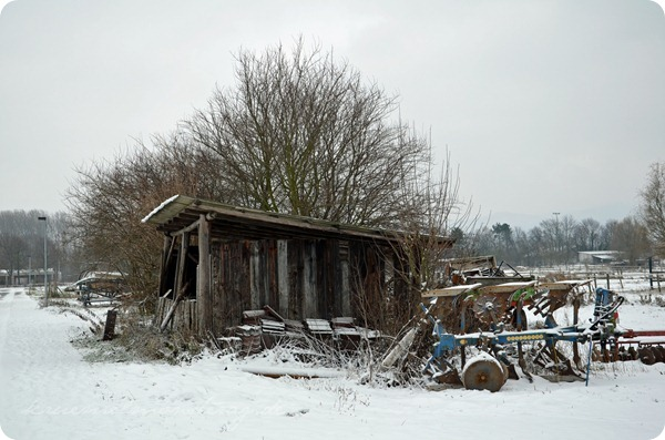 Schneesonntag 20zwölf (9)