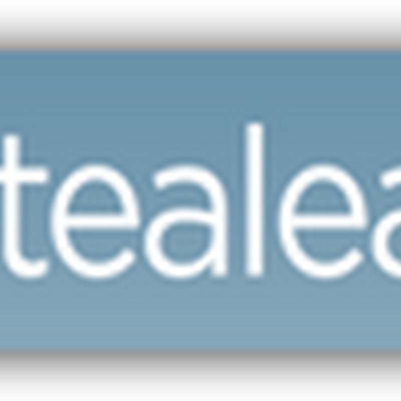 IBM Buys Tealeaf Technologies–Mining Software That Captures Users Activities When Visiting Websites