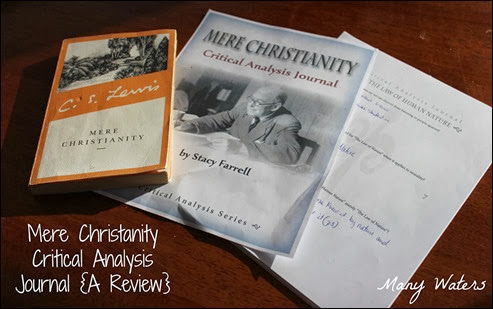 Many Waters Mere Christianity Critical Analysis Journal Review