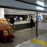 italian caffetteria at the Linate Airport in Milan, Milano, Italy