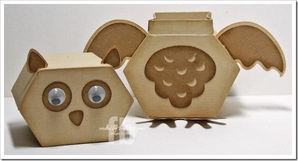 OwlBox5 wm