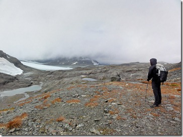 marcus_landscape