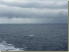 20140311_at sea 1 (Small)