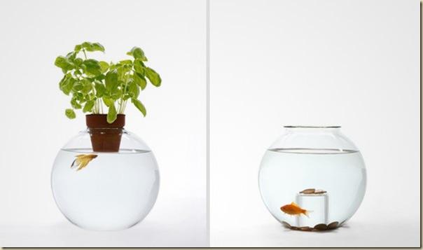 Aquariums créatifs et insolites-023