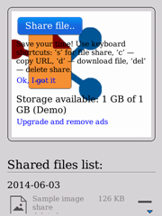 Easy File Share for BlackBerry application screenshot