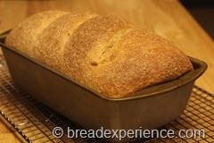 honey-graham-oatmeal-bread026