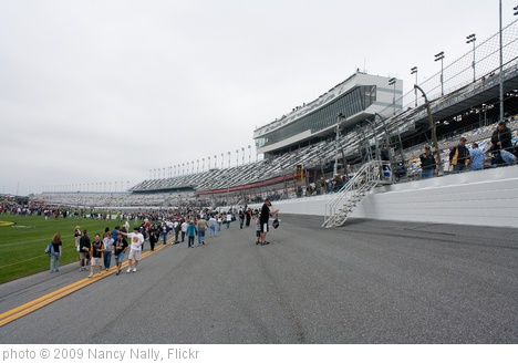 'Daytona International Speedway Frontstretch' photo (c) 2009, Nancy Nally - license: http://creativecommons.org/licenses/by-nd/2.0/