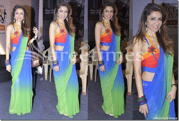 Queenie_Singh_Dual_Color_Saree