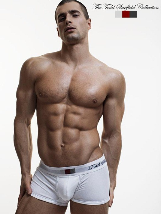 sexy guy for todd sanfield 2