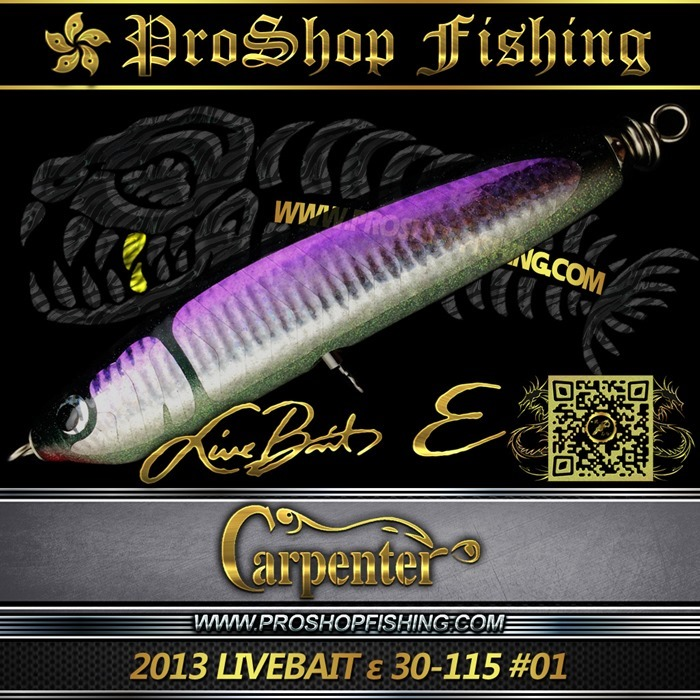 carpenter 2013 LIVEBAIT ε 30-115 #01.3