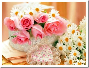 flores de junho