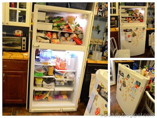 2012-06-16 fridge1