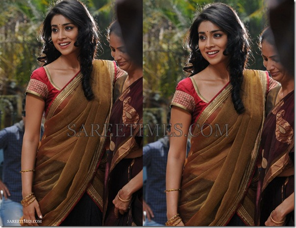 Shriya_Half_Saree