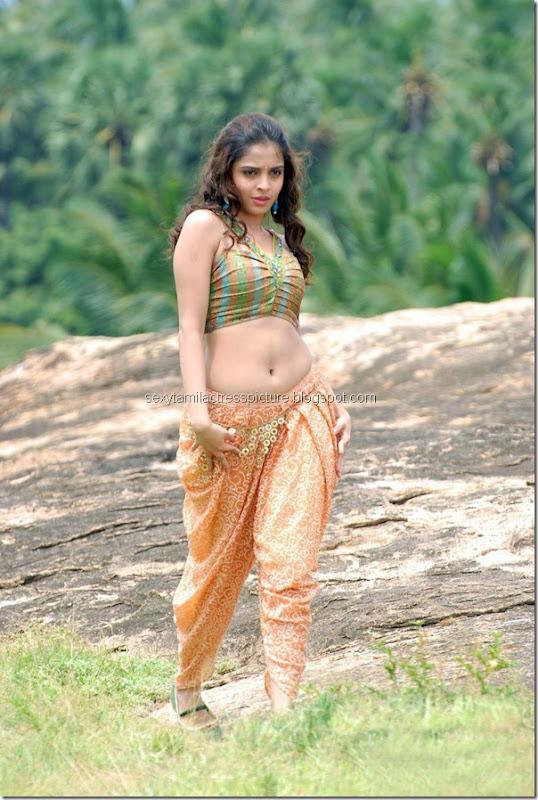 Hot-actress-Sheena-Shahabadi-hot-navel-thigh-picture