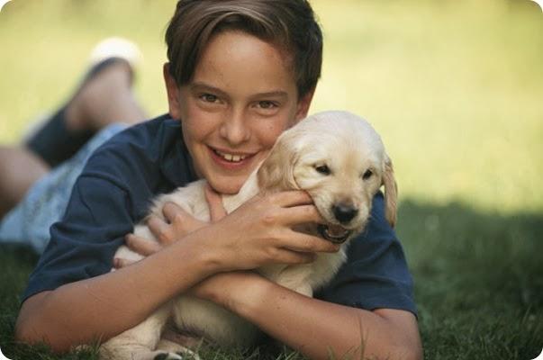 menino-cachorro