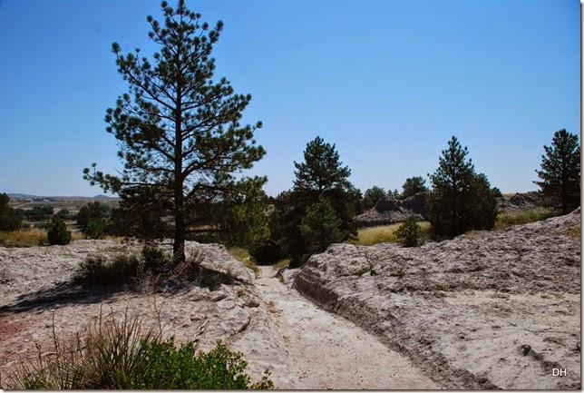 07-03-14 B Oregon Trail Ruts SHP (31)