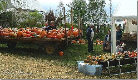 BWF_Pumpkins