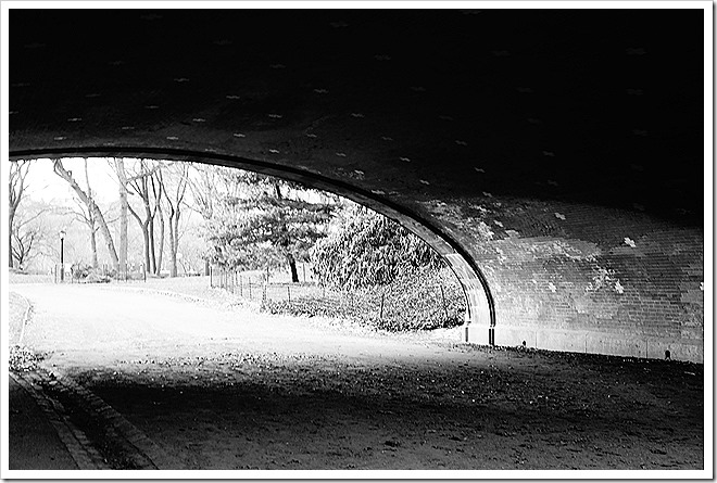 arch bridge in Central Park