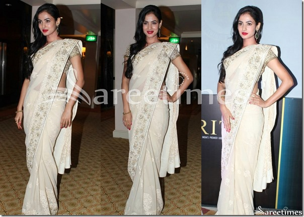 Cream_Embroidery_Saree