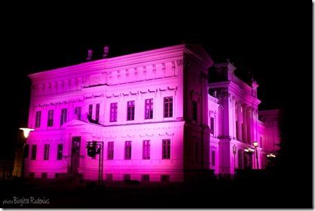 event_20121020_rosa2