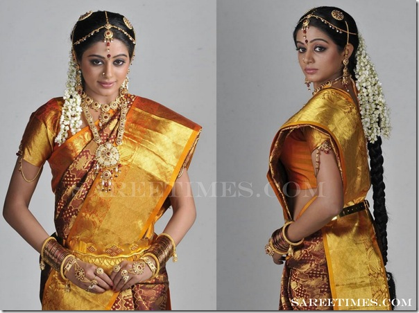 Priyamani_Traditional_Saree