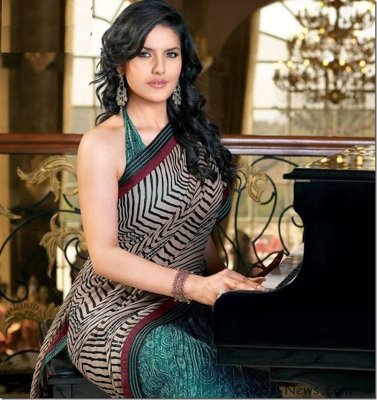 zarine-khan-saree-6