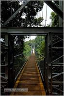 _P6A1560_Nilambur_keralapix.com