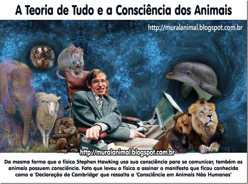 teoria_de_tudo