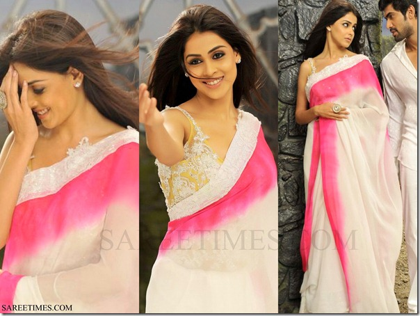 Genelia_Dual_Color_Saree