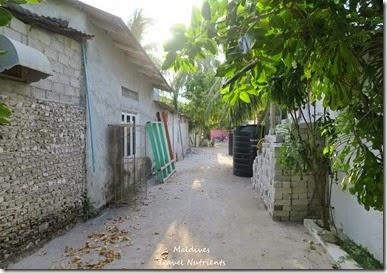 馬爾地夫居民島Mahibadhoo- Amazing Guesthouse (41)
