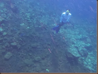 diving down to free the anchor sv delos 2