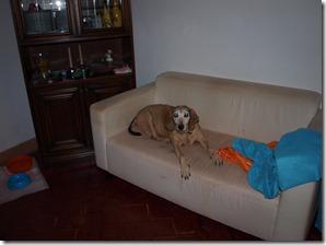 Relax sul divano 2
