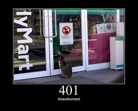HTTP-Status-Cats-06