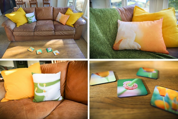 fineartamerica pillows