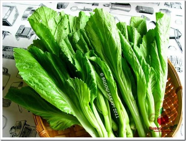 MUSTASA (Mustard Greens or Gai Choy)© BUSOG! SARAP! 2011