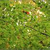2012-baran-dorota-060.jpg