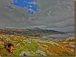 Tur nordover. Sørlandet -Snåsa. Nytt kamera! 024