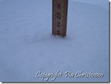 Sne 9. dec. 12