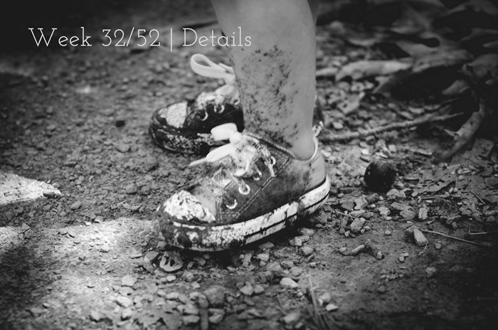 DSC_8893 P52