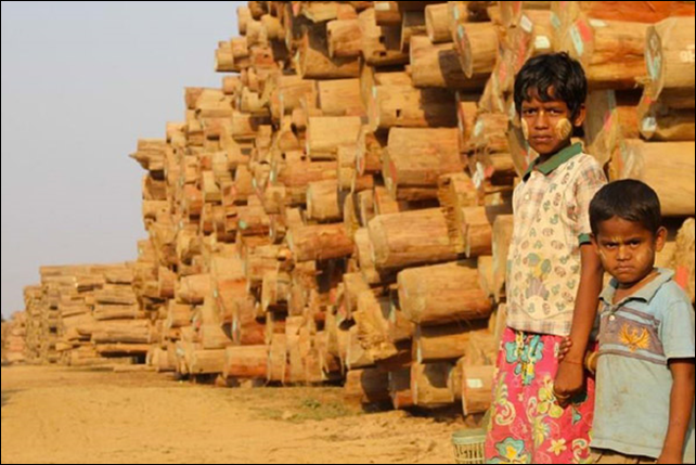 Two boys stand in front of a pile of raw logs. Illegal logging is rampant in Myanmar, and according to the EIA, 72 percent of logs exported from Myanmar between 2000-2013 were illegally harvested. Photo: EIA
