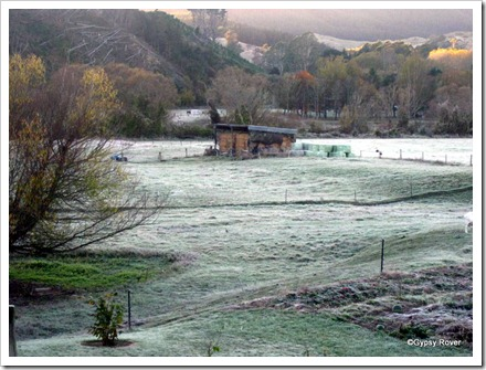 Frosty start to the day at Tapawera camp site.