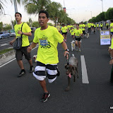 Pet Express Doggie Run 2012 Philippines. Jpg (82).JPG